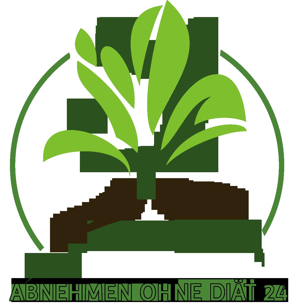 abnehmen-ohne-diaet-24.de