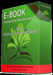 Abnehmen ohne Pillen, Pulver oder Sport E Book